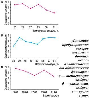 Динамика продуцирования сахаров цветками донника