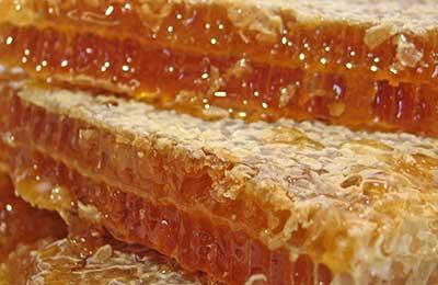 Лечение суставов мёдом ангина, вызываемая неподвижность суставов
