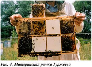 раика Гуржеева