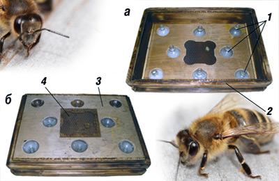 удалитель пчел